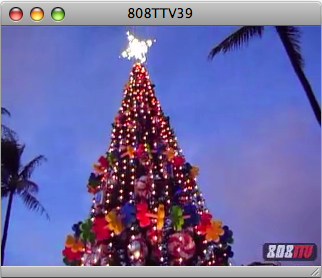 808TTV E.39 – Honolulu Christmas Lights