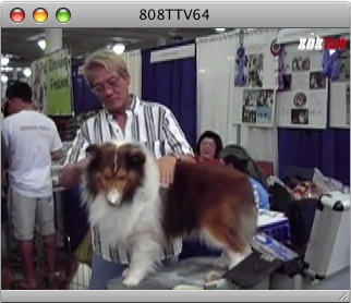 808TTV E.64 – Hawaii Pet Expo 2007
