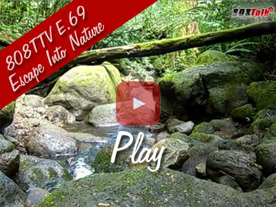 808TTV E.69 – Escape Into Nature