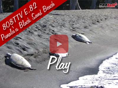 808TTV E.82 - Punalu'u Black Sand Beach