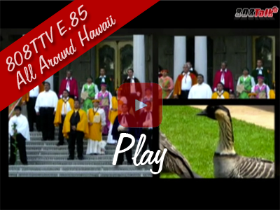 808TTV E.85 – All Around Hawaii